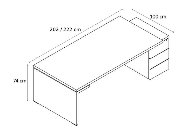 Schreibtisch_mit_Container_Faro